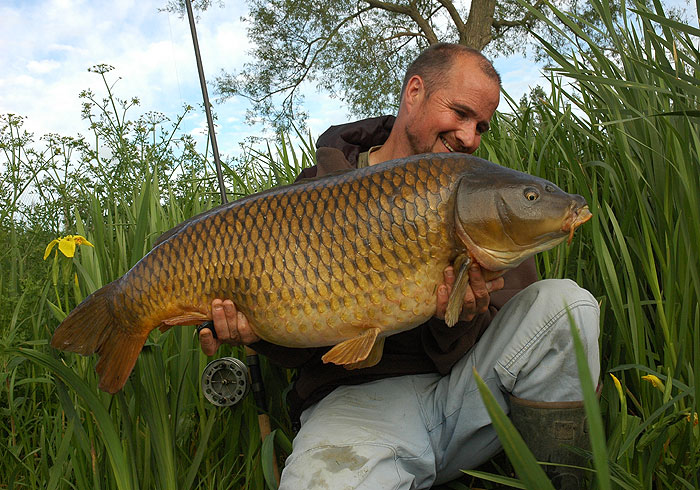 Mirrors to over 50lb+ and common carp to 40lb+